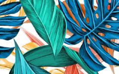 leaves-3923413_1920-01